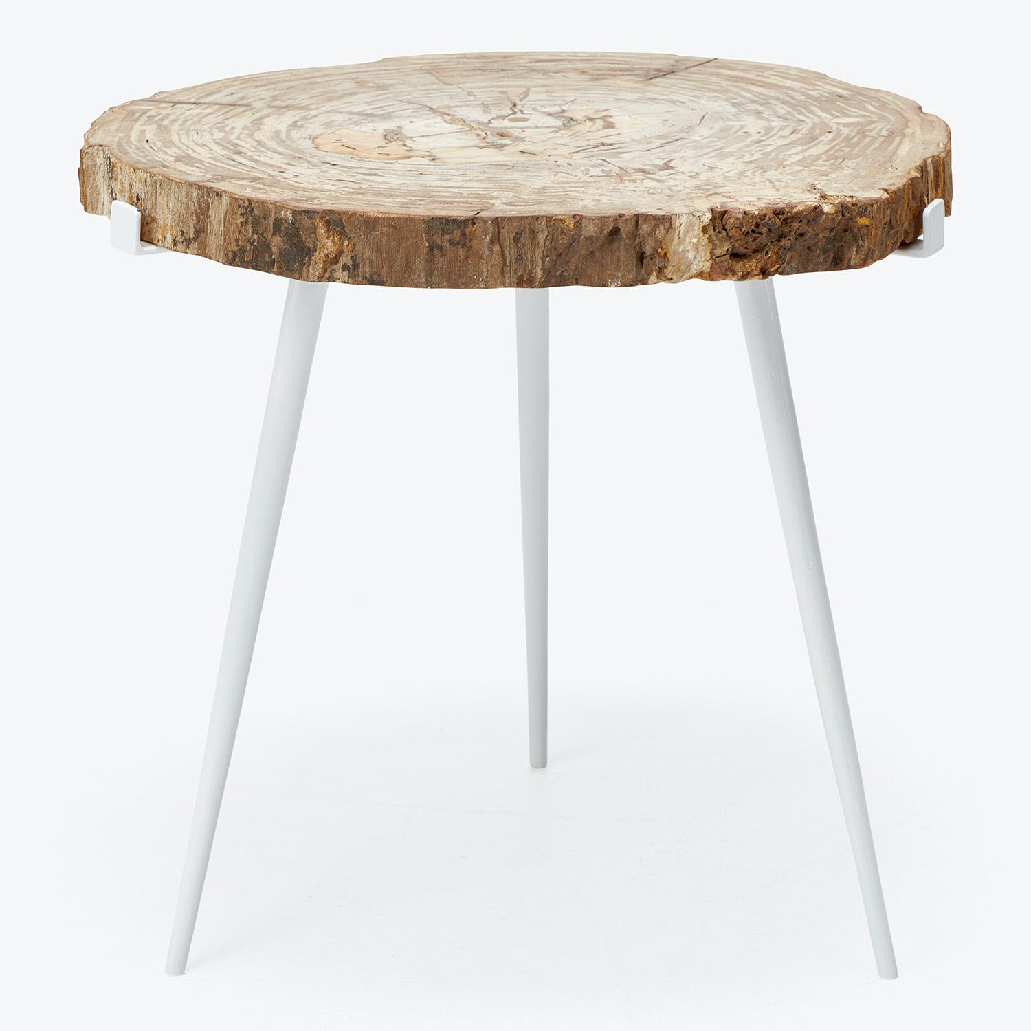 Large Petrified Side Table
