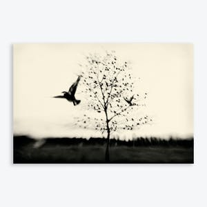 Product Image - Archival Print Black Bird Fly