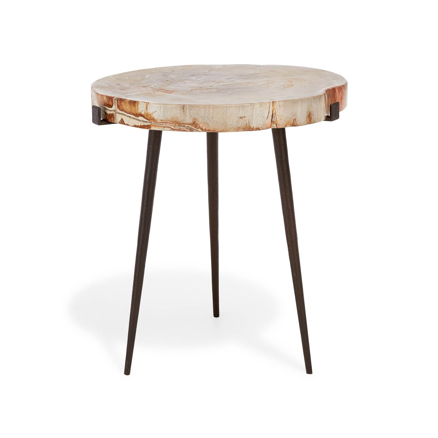 Product Image - Medium Petrified Side Table