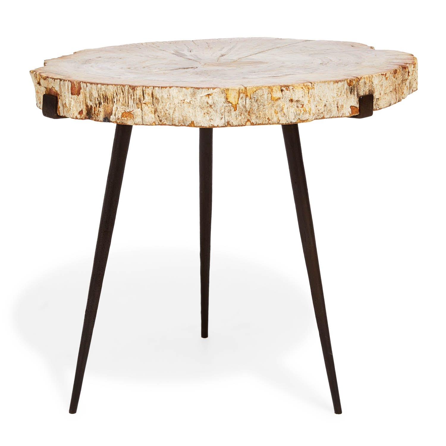 Product Image - Large Petrified Side Table
