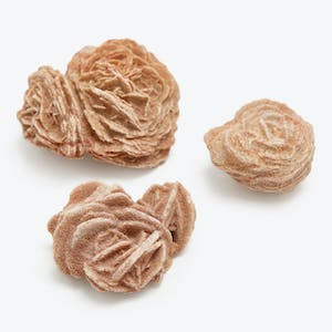 Product Image - Small Desert Roses
