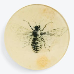 Product Image - Woven Bee Round Dish