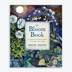 Product Image - The Bloom Book