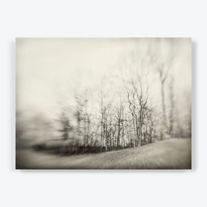 Product Image - Dream Of Silence
