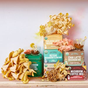 Product Image - Four Sigmatic Cordyceps Coffee Mix